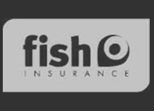 Fish-Admin
